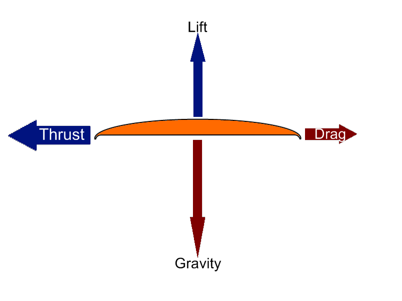 force diagrams: thrust and drag - frisbee -karlee