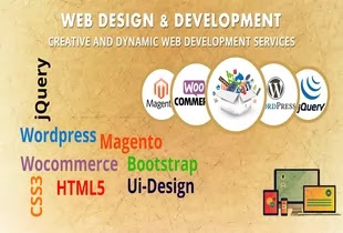 How to Become Web Designer 2020 - Courses Kaise Bane Hindi