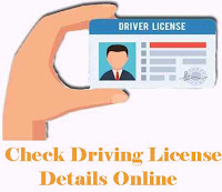 Check Driving Licence Number