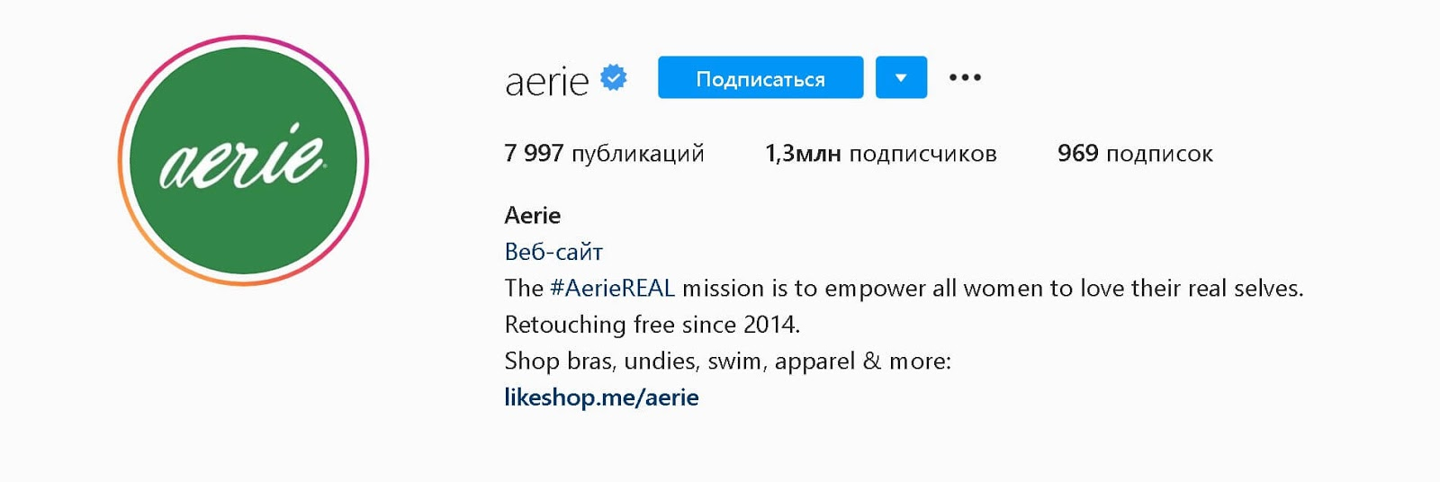instagram-bios-aerie