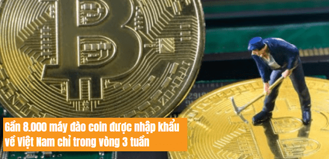nguyenthich-Gần 8.000 máy đào coin được nhập khẩu về Việt Nam chỉ trong vòng 3 tuần