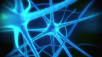 La enfermedad de CREUTZFELDT-JAKOB, una demencia neurológica-vitalia-centro-de-dia-en-alcala-de-henares