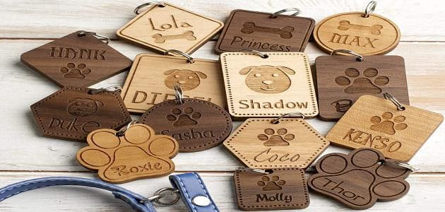 Guide to keeping a pet id tag