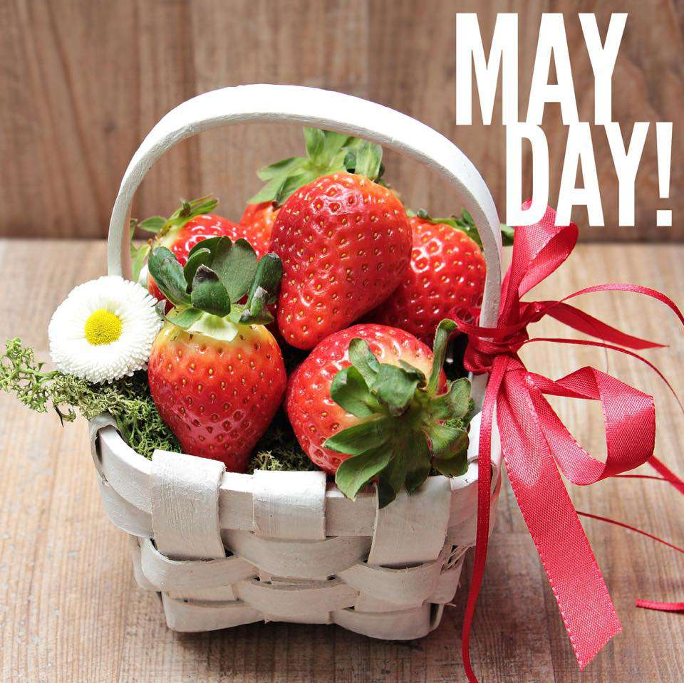 May Day Wishes Beautiful Image