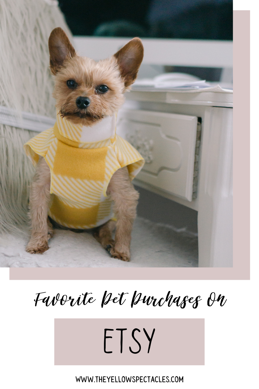 Here are my favorite Pet Purchases from Etsy