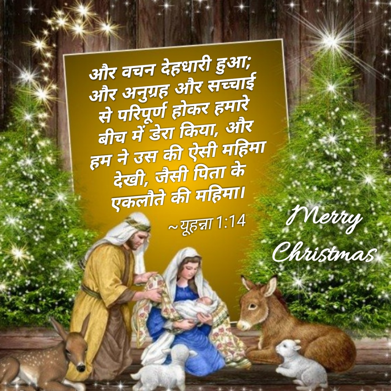 Beautiful Christmas wishes Bible Verses | Merry Christmas Quotes