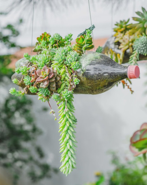 Reuse Household Waste In The Garden