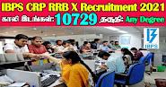 IBPS CRP RRB X Recruitment 2021 10729 Posts