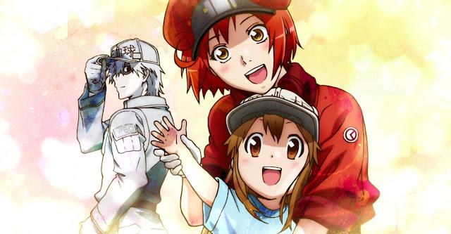 Segunda temporada de Hataraku Saibou contará con 8 episodios