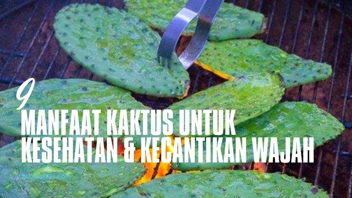 Manfaat Kaktus Untuk Kesehatan dan Kecantikan