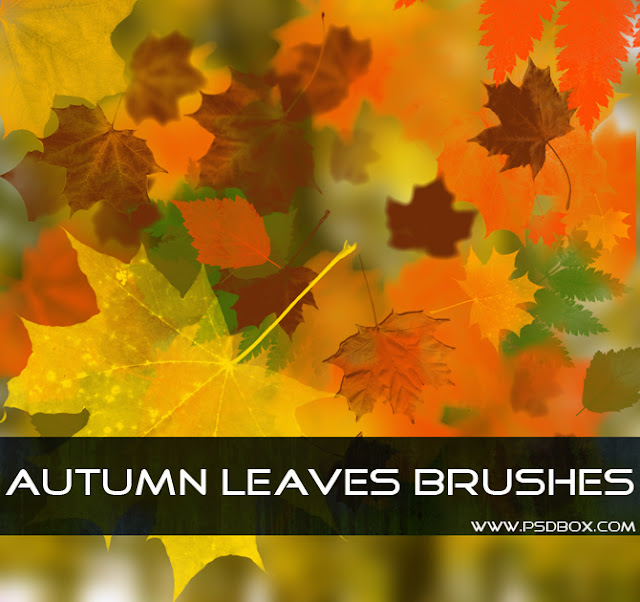 Осенние листья: бесплатные кисти для Фотошопа