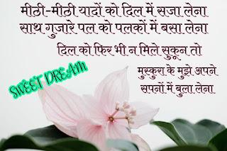 शुभ रात्रि शायरी, 2020 लेटेस्ट गुड नाईट शायरी, Romantic Good Night Shayari In Hindi, Top 2020 Good Night Shayari, Good Night Shayari Images, Good Night Shayari Photos,