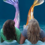 Mermaids of the Lake on Facebook