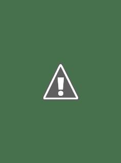 "Portada de la película ""Buscando a Nemo"""