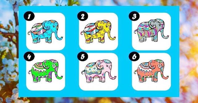 Elige un elefante de la fortuna y revelará todo sobre tu prosperidad