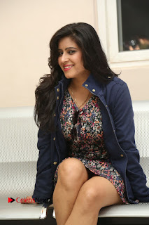 Actress Manisha Tagore Pictures at Hyderabad Love Story Platinum Disc Function  0141