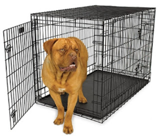Dog, crate,midwest, ultimapro