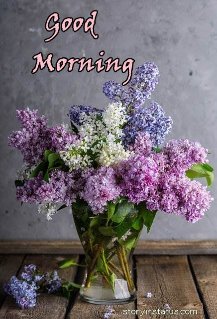 good morning beautiful flowers