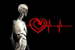 Mengobati Penyakit Liver Atau Hati Dengan Pengobatan Tradisional