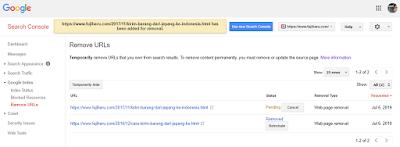 Pengalaman Menghapus URL dari Google Search