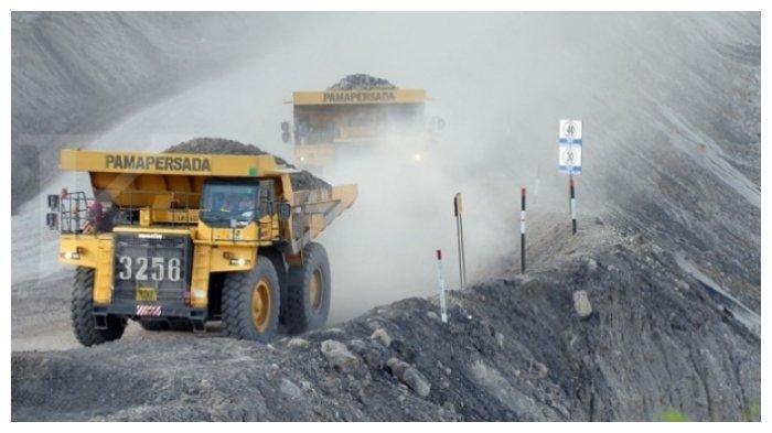 skill untuk masuk industri tambang batu bara