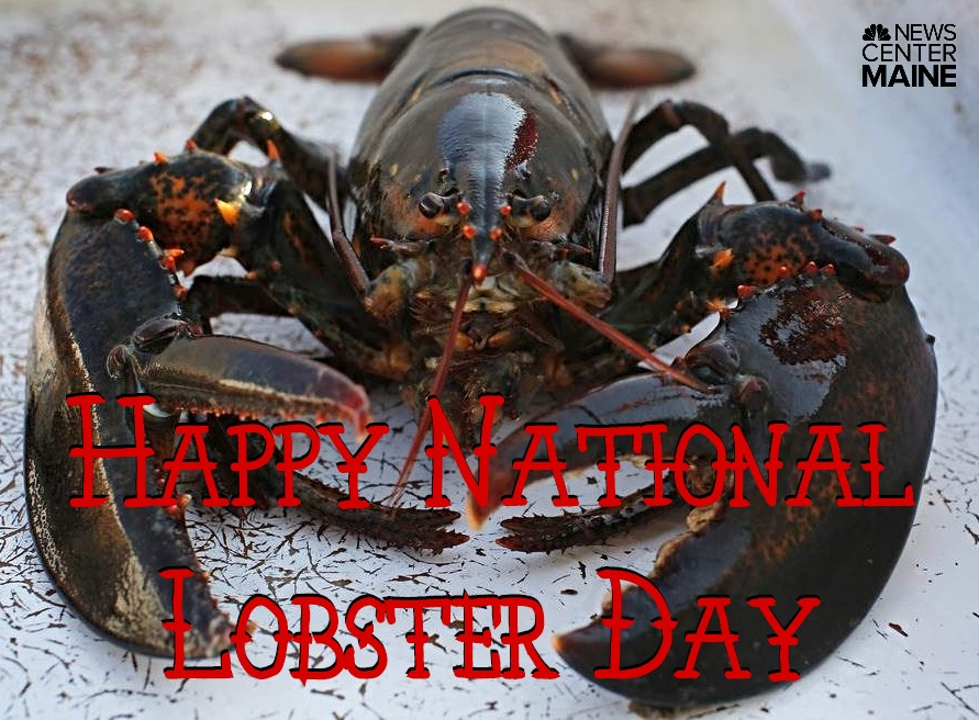 National Lobster Day Wishes Awesome Images, Pictures, Photos, Wallpapers