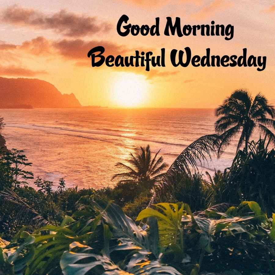 wednesday wishes images