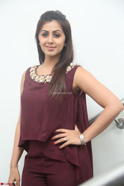Nikki Galrani in a Brown Shining Sleeveless Gown at Nakshatram music launch ~  Exclusive 004.JPG