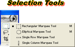 Selection Tool photoshop