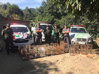 POLÍCIA MILITAR PRENDE HOMEM POR TRÁFICO DE DROGAS E MULTA EM MAIS DE R$19 MIL POR CRIMES AMBIENTAIS EM CAJATI