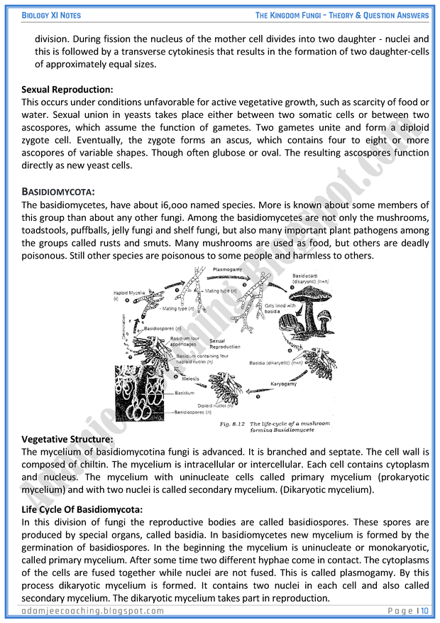 kingdom-fungi-descriptive-question-answers-biology-11th
