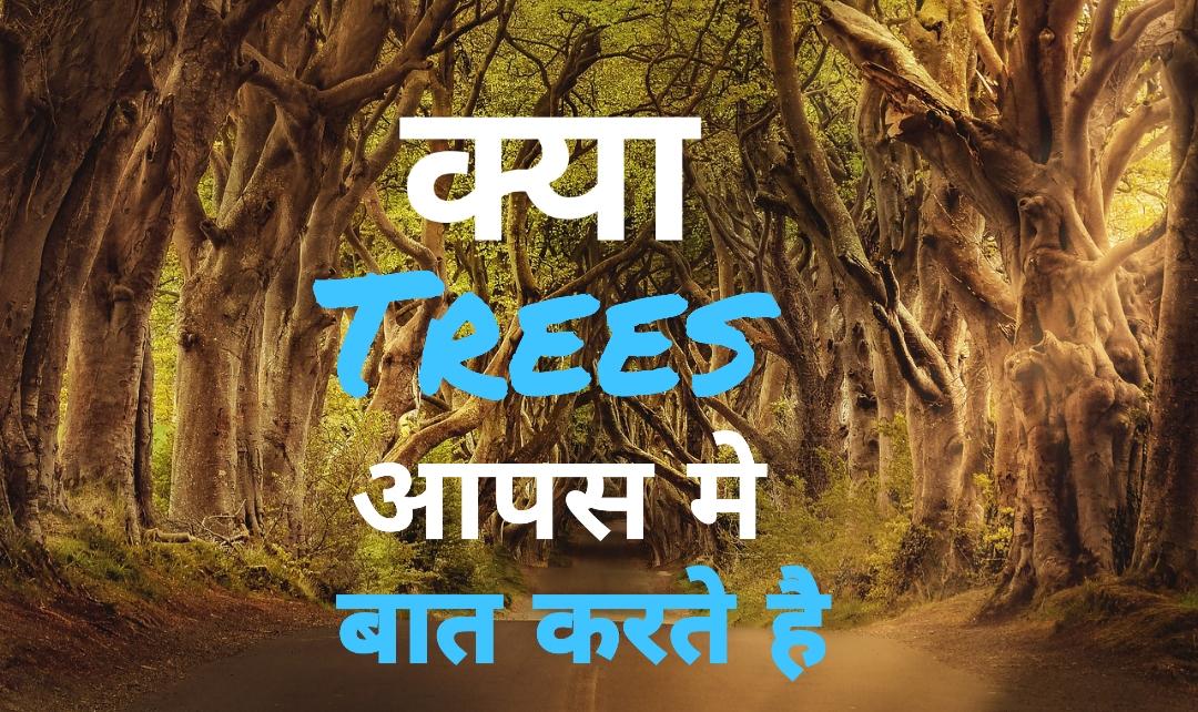 पेड़-पौधे आपस में बात करते हैं - जानिये कैसे | Do Trees Talk to Each Other? | Science of Tree Network