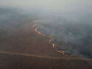 Amazônia Incêndio