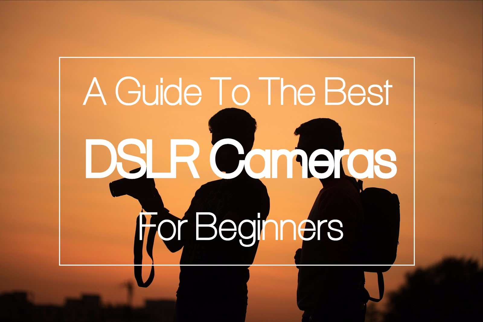 A Guide to the Best DSLR Cameras for Beginners