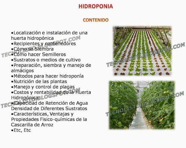 """Contenido hidroponia"""
