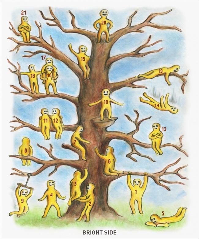 Tes Psikologi pohon