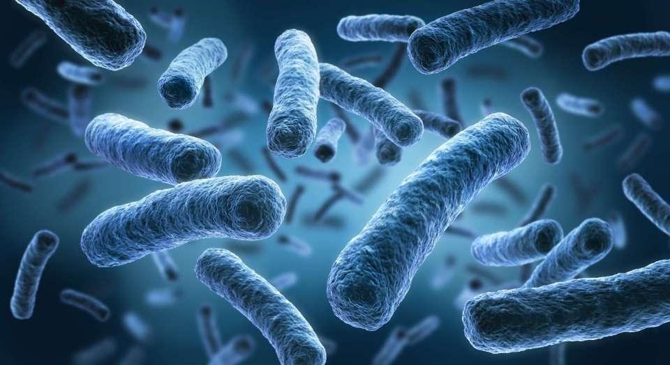Une bactérie s'échappe d'un laboratoire en Chine, près de 3.000 personnes contaminées