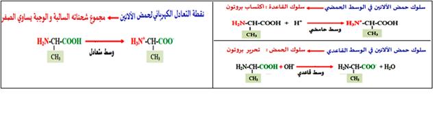 سلوك الاحماض الأمينية في الوسط