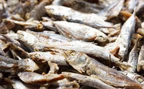 Cara Mudah Hilangkan Formalin pada Mie, Tahu dan Ikan
