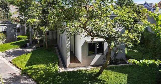 Ngôi nhà tuyệt đẹp, siêu độc đáo 'nuốt' trọn 5 cây gỗ quý ở Nghệ An lên báo Tây