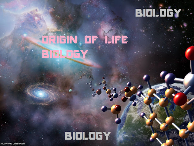 WHAT IS ORIGIN OF LIFE ? | BIOLOGY