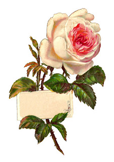 digital label white rose design