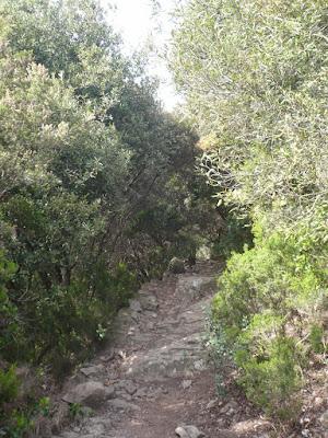 sentiero Cinque terre