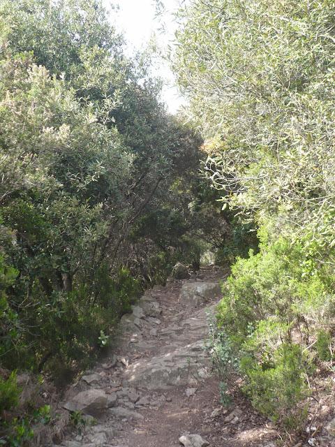 sentiero Monterosso - Levanto