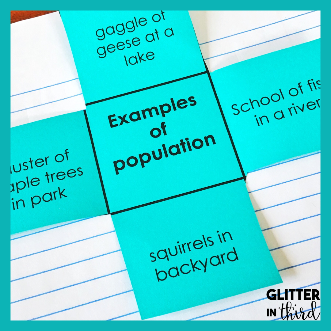 medium resolution of A Guide to MASTER 4th Grade Science SOLs - Glitter in Third