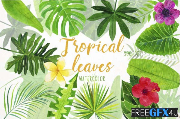watercolor elements of tropical leaves for design