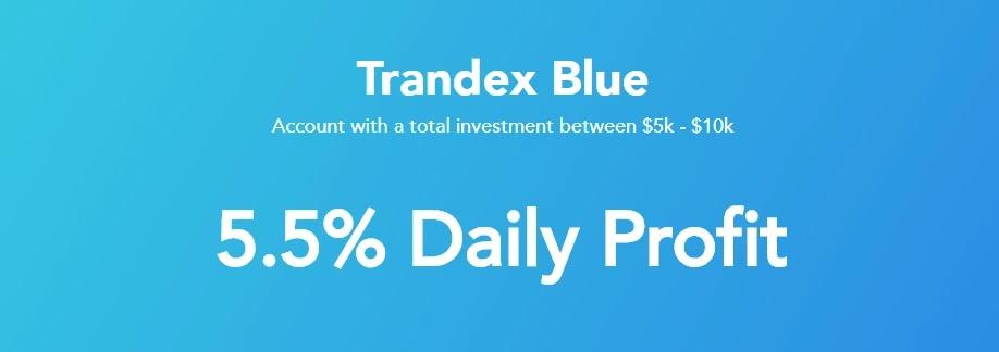 Инвестиционные планы Trandex 2