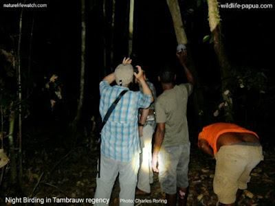 wisatawan amerika jelajah hutan Distrik Selemkai di Kabupaten Tambrauw