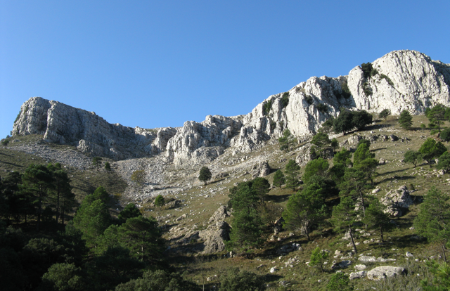 Serra de Llaberia ( Priorat).