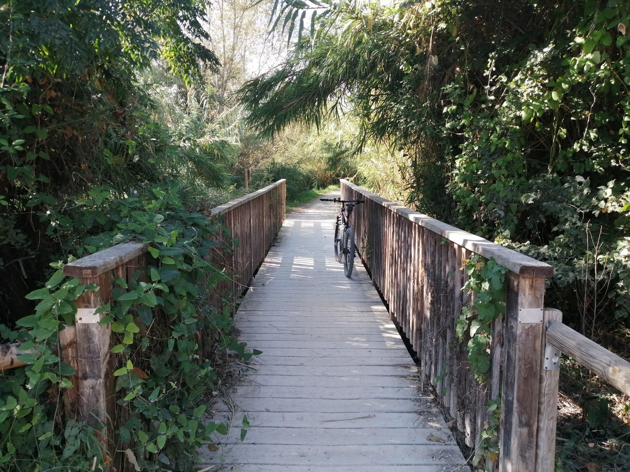 Wooden bridge over the River Turia